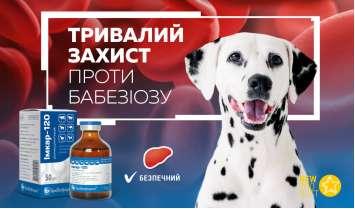 Імкар-120 — тривалий захист собак проти бабезiозу