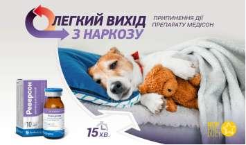 Реверсон — легкий вихід з наркозу для собак та котів